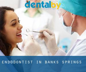 Endodontist in Banks Springs