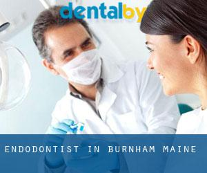 Endodontist in Burnham (Maine)