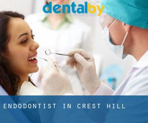 Endodontist in Crest Hill